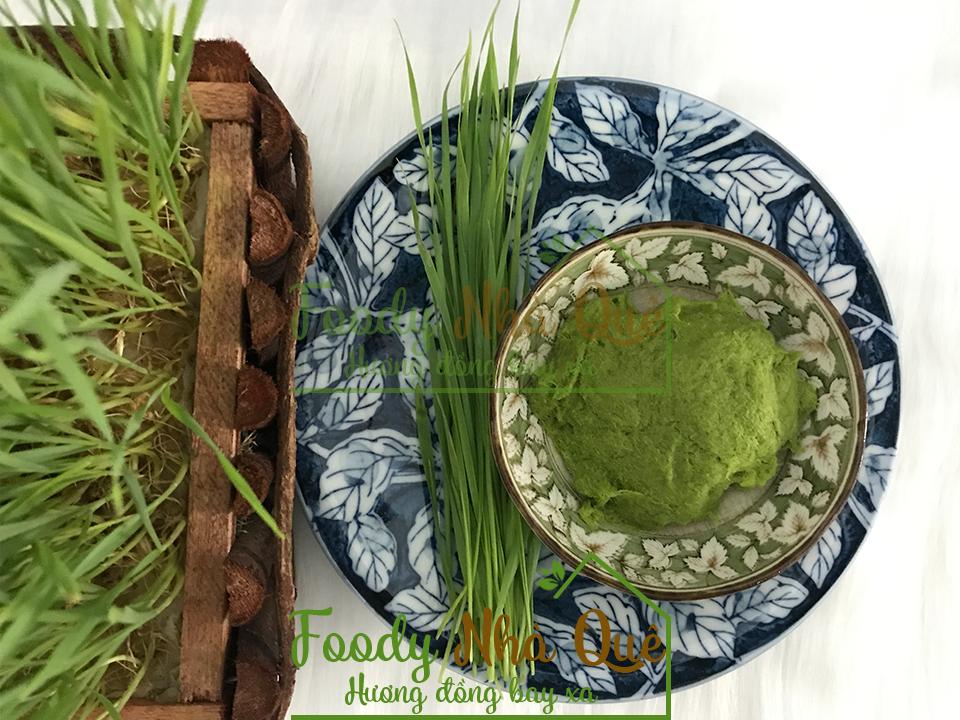 cỏ lúa mì có tác dụng gì